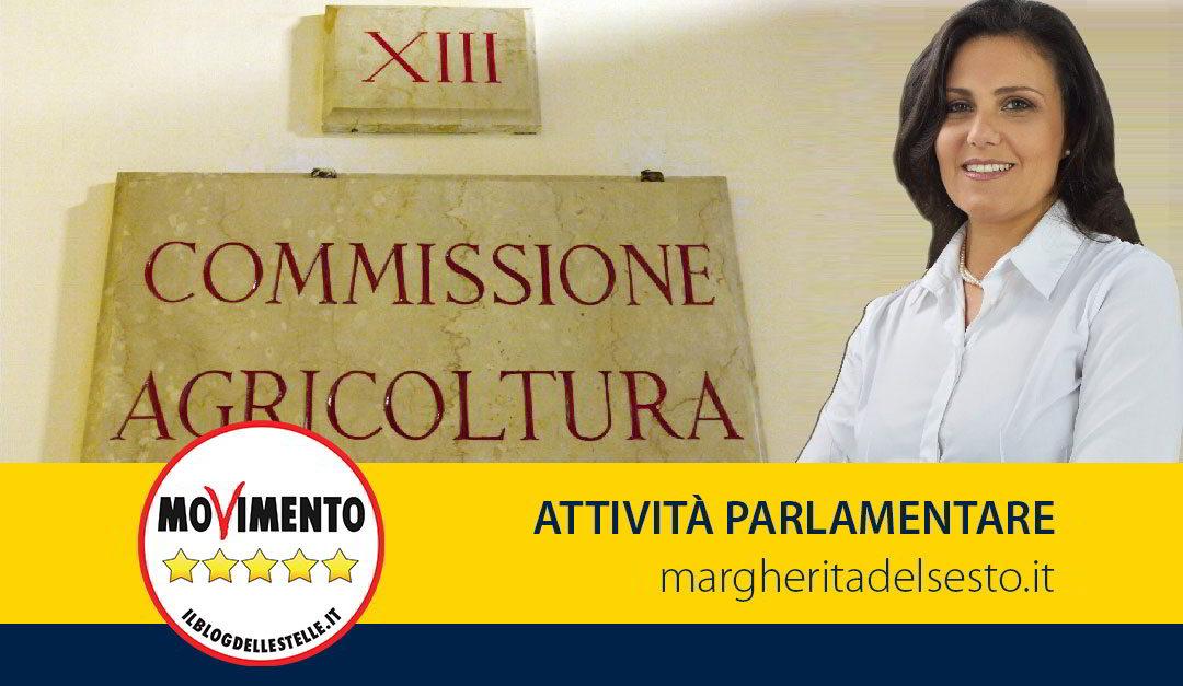 """Relatrice proposta di legge pomodoro San Marzano """"dop"""""""